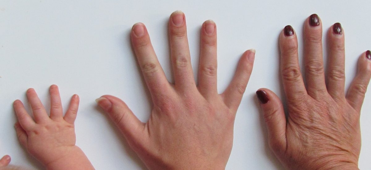Incontinencia Urinaria y Fitoterapia con Semillas de Calabaza